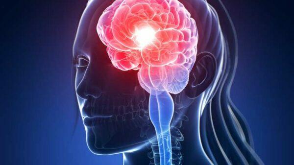 Cambios en el cerebro durante la menstruación