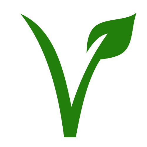 El veganismo y las copas menstruales